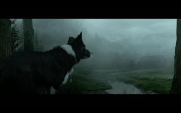 Cinemadogs – Die Hundekomparsenagentur