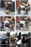 Dogwash Ablauf Hundewäsche