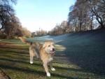 Bonny im Park
