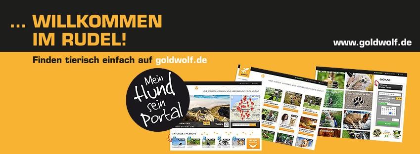 goldwolf banner