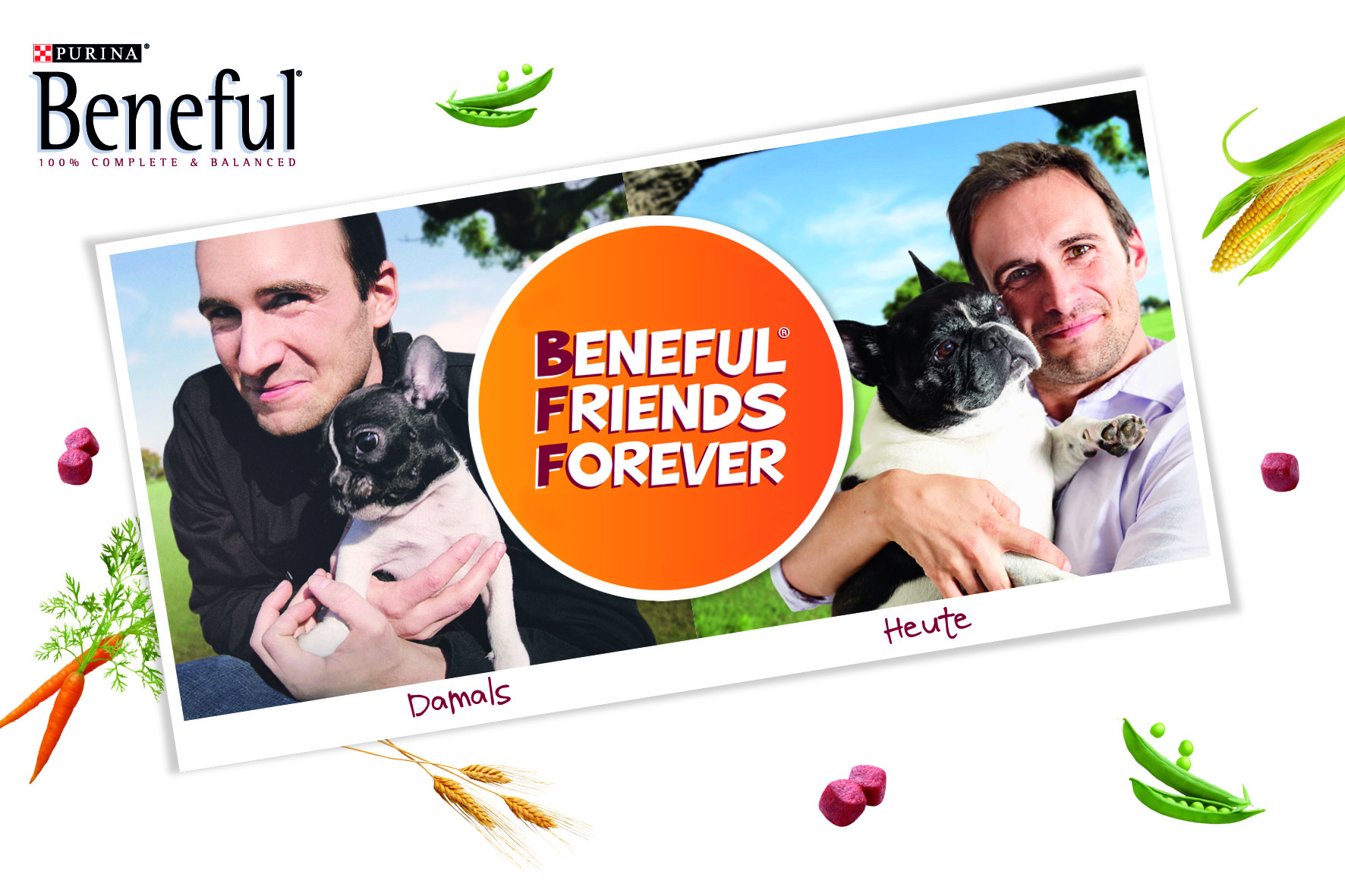 Logo Beneful Friends Forever
