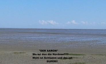 """""""DER AARON"""" – Mein Ausflug ins Watt!"""