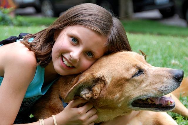 3 Schritte, wie du die Beziehung zu deinem Hund verstärken kannst