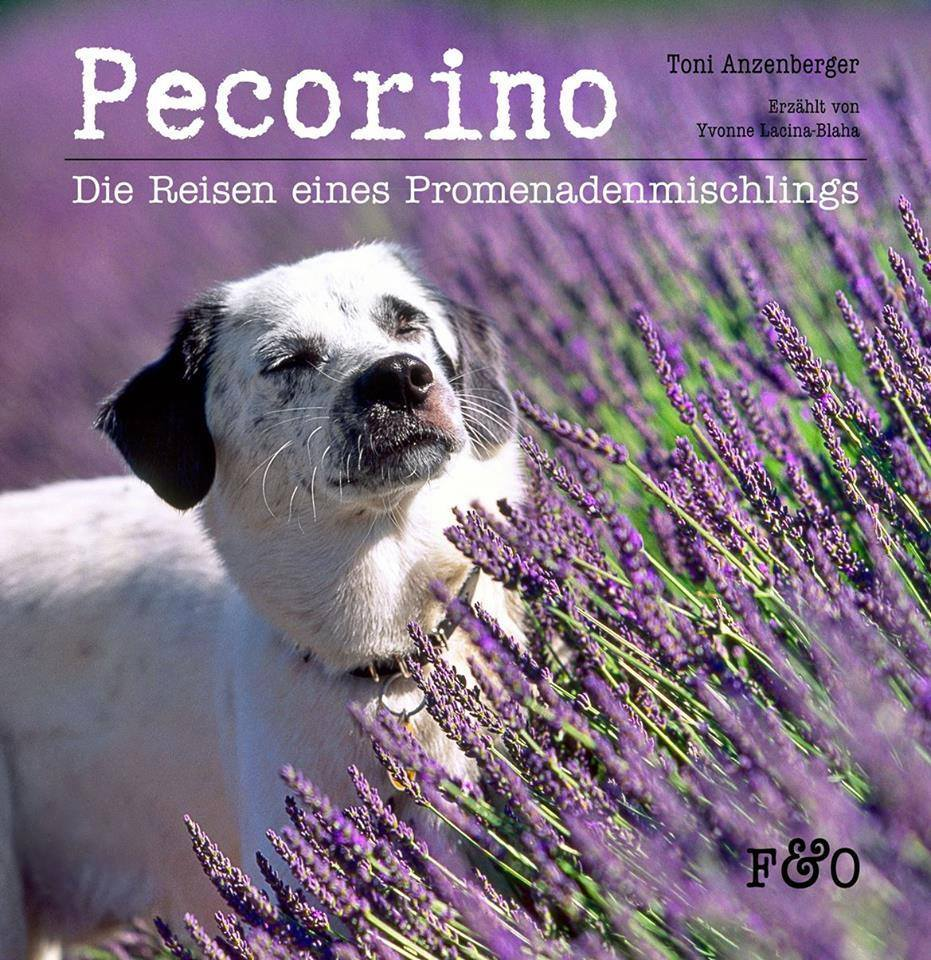 pecorina cover - Die Reisen eines Promenademischlings