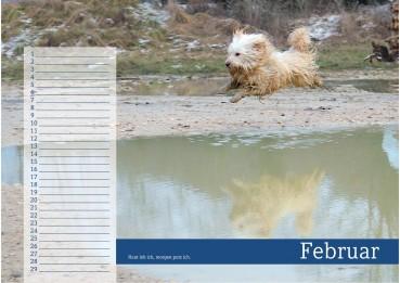 """""""Dreckige Hunde"""" – ein Kalender als nette Geschenkidee"""