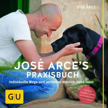 José Arce's Praxisbuch – Leseprobe