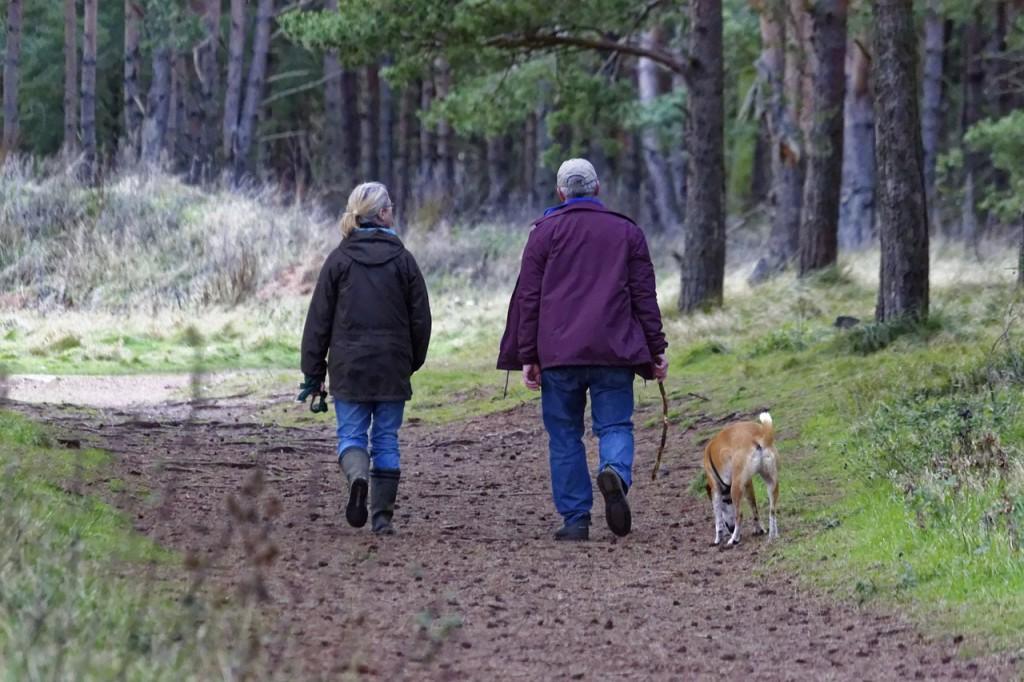 Älteres Ehepaar geht mit Hund im Wald spazieren