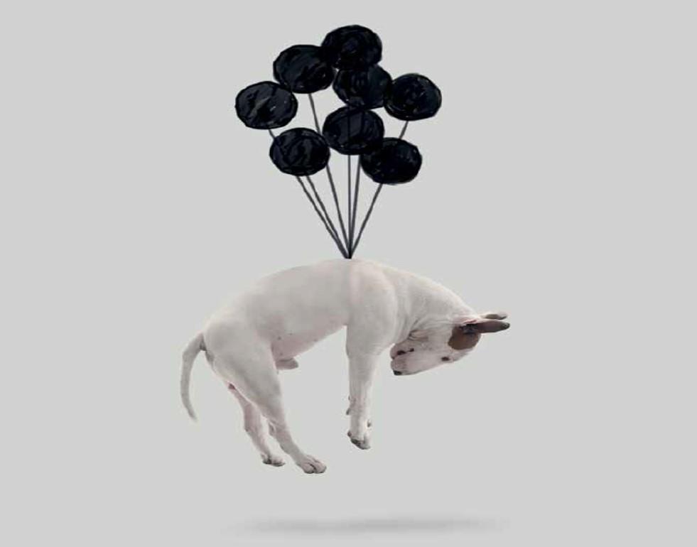 jimmy und seine 99 luftballons