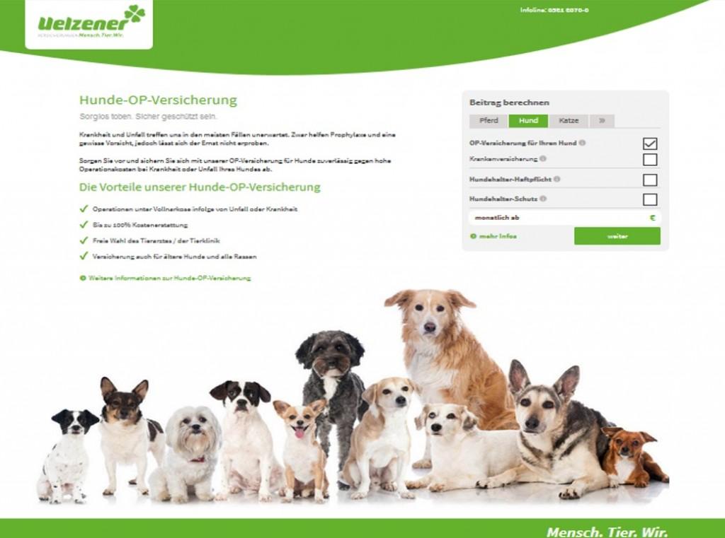 uelzener op versicherung hund
