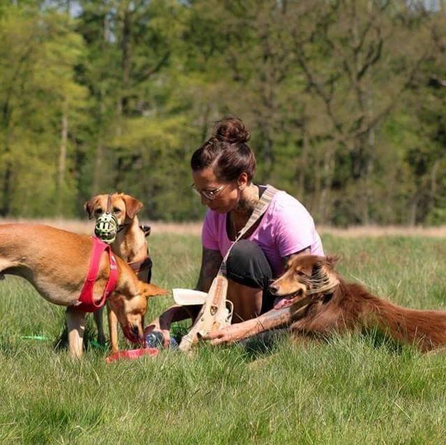 Sonja mit 3 Hunden