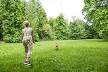 Geschützt: Zeckenschutz Hund