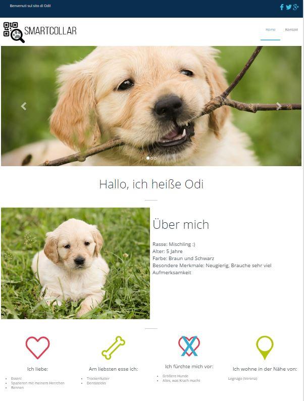 screenshot-webseite-beispiel-hund