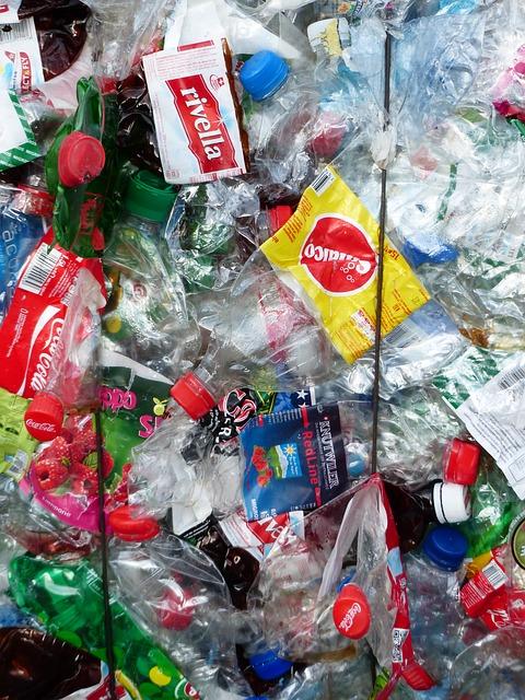 Müll – Hauptgefahr für Hunde!