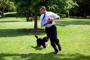 Obama mit Hund-Prominente und ihre Hunde