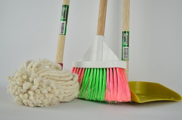 Wirkungsvolle Reinigungsgeräte für Hundebesitzer