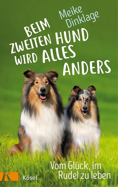 """""""Beim zweiten Hund wird alles anders"""" – Buchvorstellung inkl Leseprobe"""