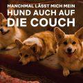 """Hunde Meme """"manchmal lässt mich mein Hund auch auf die Couch"""""""