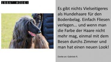 Im Hundehaar-Test: Der Staubsauger Thomas Cycloon Hybrid Pet & Friends