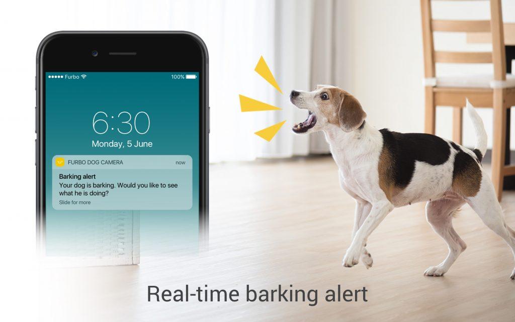Furbo Bell Alarm App