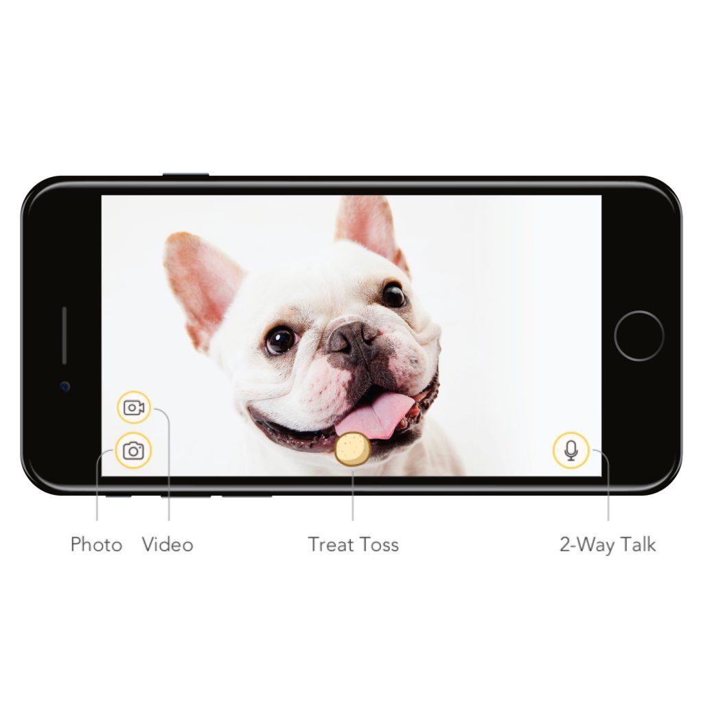 Furbo Hunde Livestream