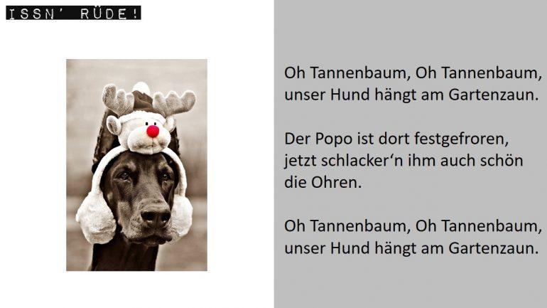 Weihnachtslieder Oh Tannenbaum.Weihnachtslieder Auf Den Hund Gebracht Issn Rüde Hunde News