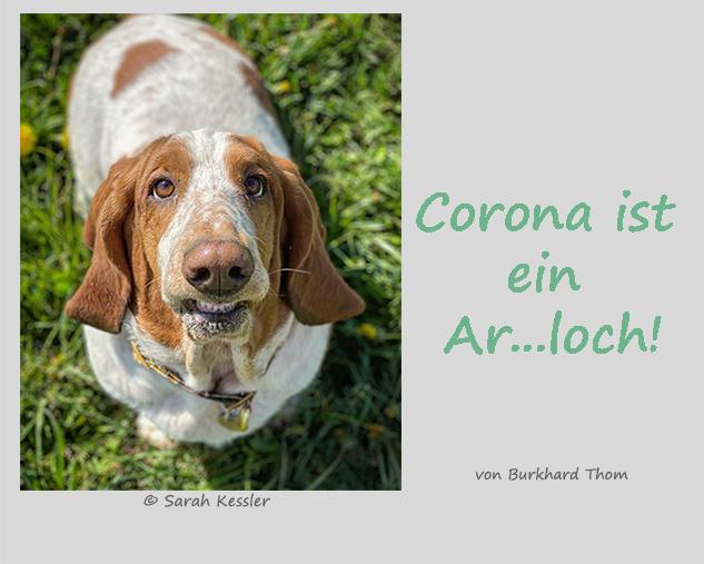 Corona ist ein Ar…loch!