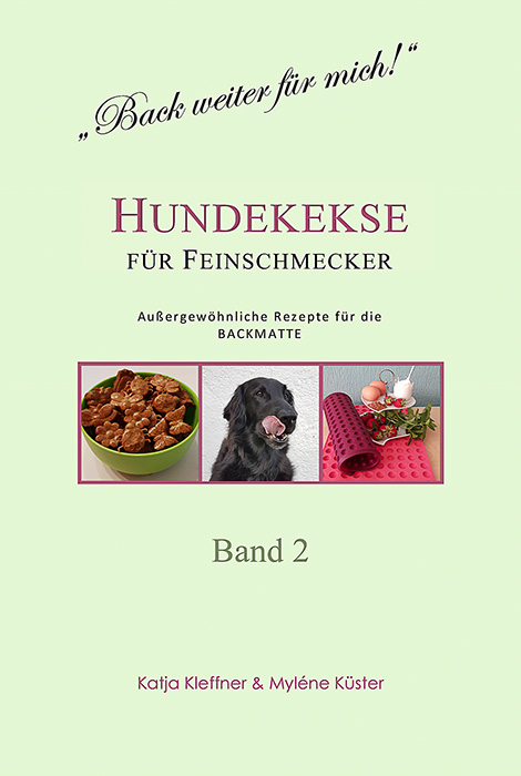 band-2-cover