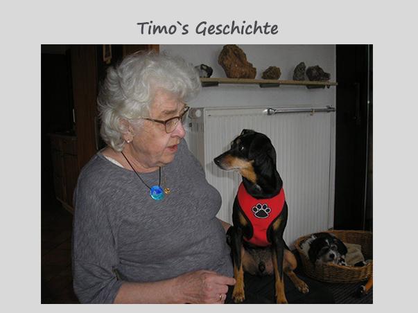 Timo – von Karin Oehl