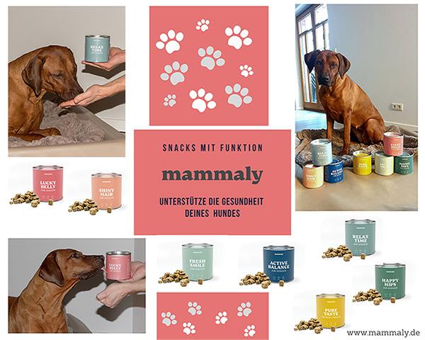 Natürlich gesund und lecker –  Snacks von Mammaly
