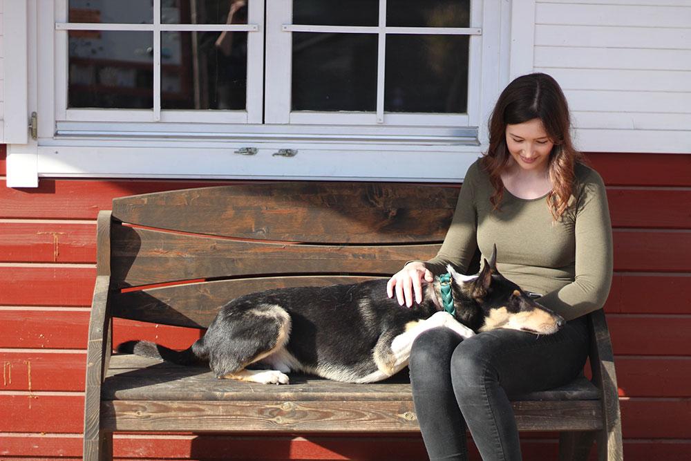 Was braucht ein Tierschutzhund direkt nach Übernahme?