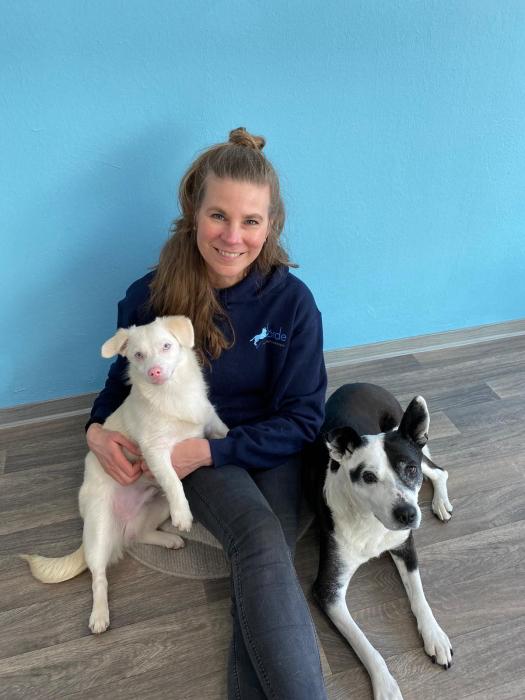 förde hundephysiotherapie