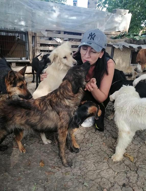 Tierschutzverein Team Pfote